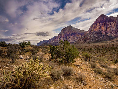 Stormy Red Rock Art Print by Michele James