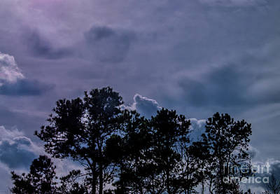 Photograph - Stormy Silhouette by Scott Hervieux