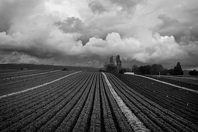 Photograph - Stormy Skies by Morgan Wright