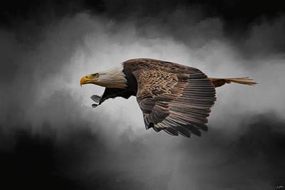 Stormy Sky Flight Art Print by Jai Johnson