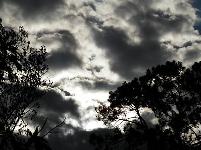 Photograph - Stormy Southern Skies by Belinda Lee