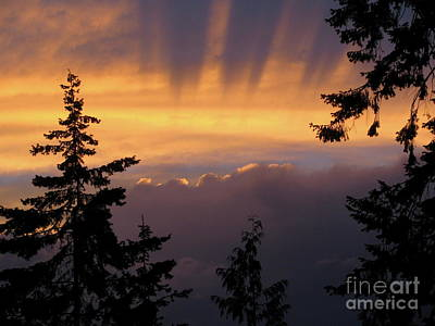 Photograph - Stormy Sunset by Leone Lund