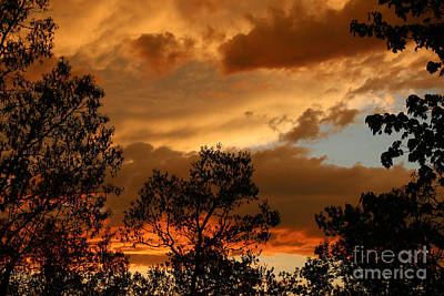 Photograph - Stormy Sunset by Marilyn Carlyle Greiner