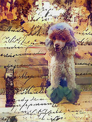 Digital Art - Story Of A Painted Poodle On A Park Bench by Nina Silver