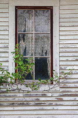 Photograph - Story Window by Fran Riley