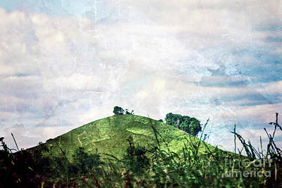 Photograph - Storybook Hill by Janie Johnson