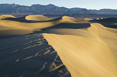 Photograph - Dunes At Stovepipe Wells by Michael Balen