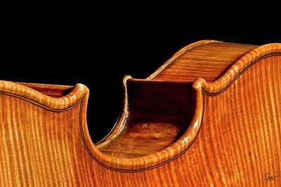 Photograph - Stradivarius Back Corner by Endre Balogh
