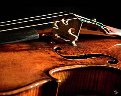 Photograph - Stradivarius by Endre Balogh