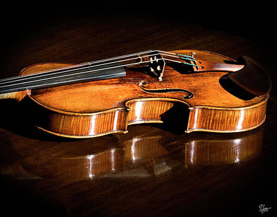 Violin Photograph - Stradivarius In Sunlight by Endre Balogh