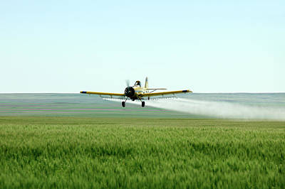 Agriculture Photograph - Strafing Run by Todd Klassy