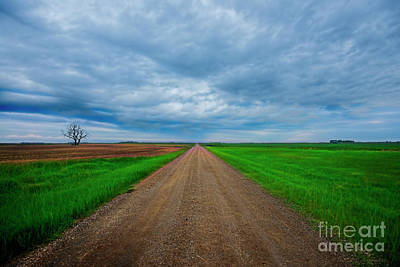 Photograph - Straight And Narrow by David Arment