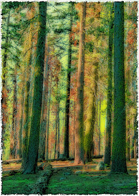 Straight And Tall Art Print by Michael Cleere