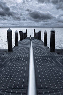 Photograph - Straight To The Sea by Robin-Lee Vieira