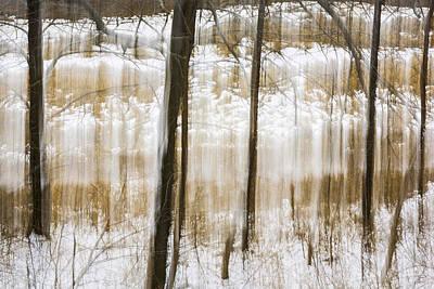 Straining Against Winter Art Print