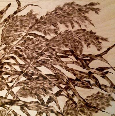 Woodburning Pyrography - Straining In Wind by Victoria General