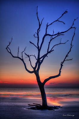 Photograph - Stranded Driftwood Beach Sunrise Jekyll Island Georgia by Reid Callaway