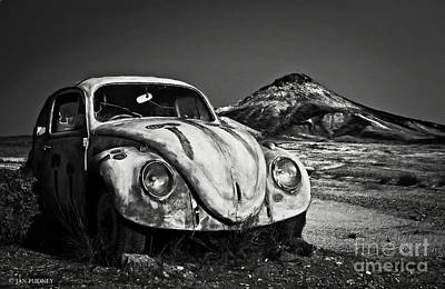 Merging Photograph - Stranded by Jan Pudney