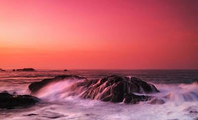 Costarica Photograph - Strange Affliction by Luis Figuer