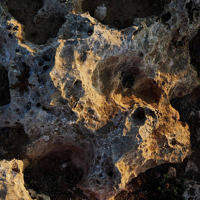 Photograph - Strange Ground by Jouko Lehto