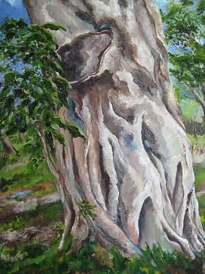 Strangler Fig Art Print by Lisa Boyd