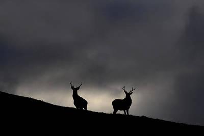 Photograph - Strathfarrar Silhouettes by Gavin MacRae