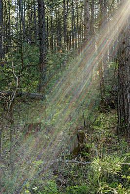 Photograph - Stratolight by Dakota Light Photography By Dakota