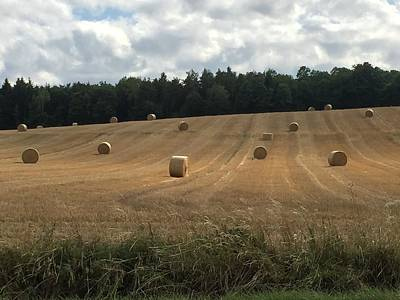Photograph - Straw Bales by Eric Tressler