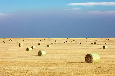 Photograph - Straw Bales by Todd Klassy