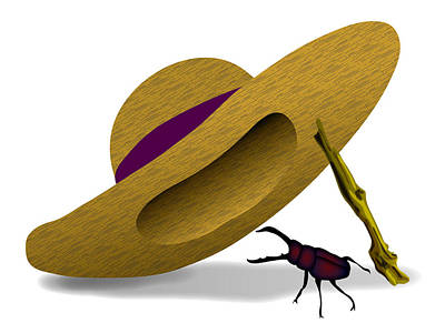 Digital Art - Straw Hat And Stag Beetle by Moto-hal