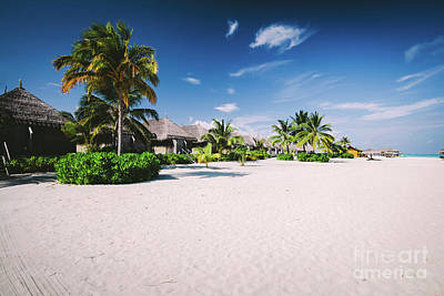 Photograph - Straw Houses On A Sandy Beach With Tropical Flora On Maldives by Michal Bednarek