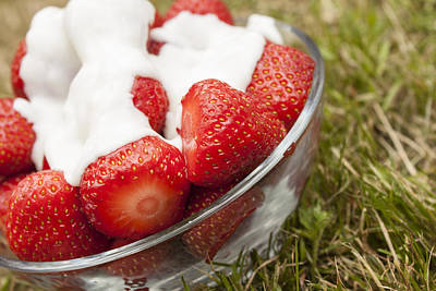 Photograph - Strawberries And Cream by Stewart Scott