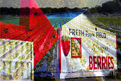 Photograph - Strawberries Fresh From The Field by David Lee Thompson