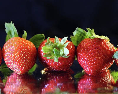 Photograph - Strawberris In A Row by Angela Murdock