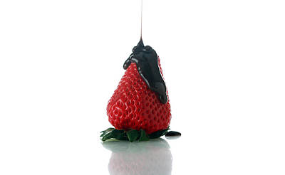 Dray Plants Photograph - Strawberry And Chocolate by Michael Ledray