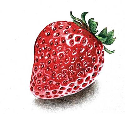 Drawing - Strawberry Bite by Janet Moss