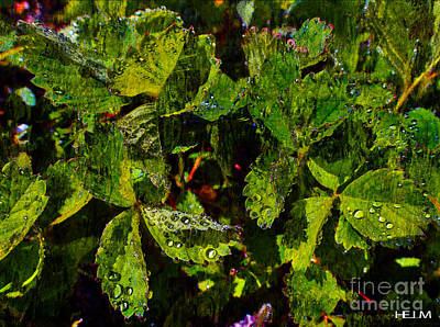 Photograph - Strawberry Dew by Mayhem Mediums