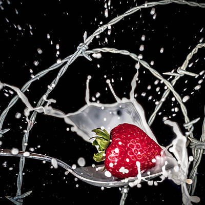 Art Print featuring the photograph Strawberry Extreme Sports by TC Morgan