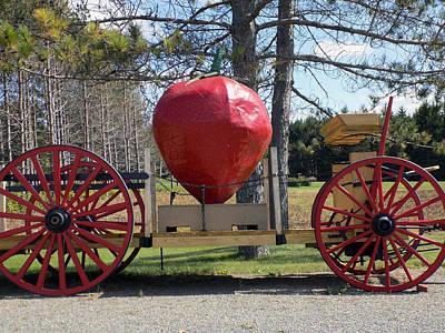Mcelwain Photograph - Strawberry Farm Wagon by William Tasker