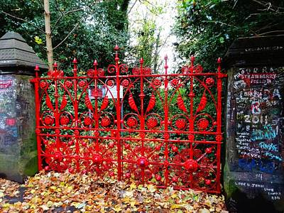 Photograph - Strawberry Fields Forever by Alan Lakin