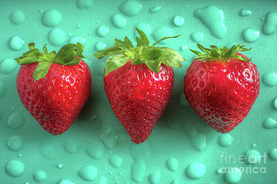 Photograph - Strawberry Fresh Three by Carlos Caetano