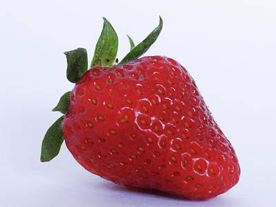 Photograph - Strawberry by Julia Wilcox