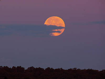 Photograph - Strawberry Moon by Buddy Scott