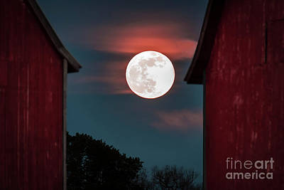 Photograph - Strawberry Moon by Joann Long