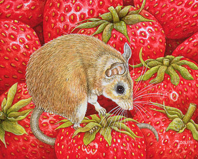 Strawberry Mouse Art Print by Ditz