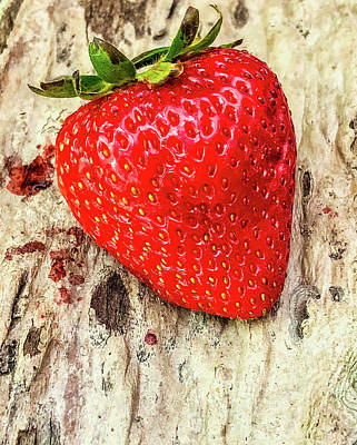 Photograph - Strawberry by Steph Gabler