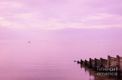 Photograph - Strawberry Sunset, Whitstable by Perry Rodriguez
