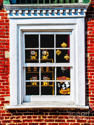 Photograph - Stray Cats Window by Frances Ann Hattier
