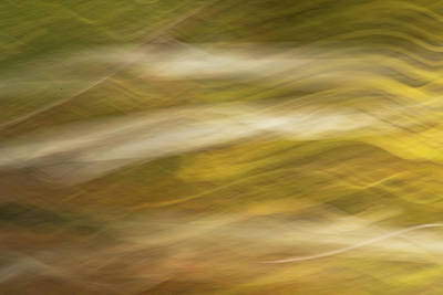 Photograph - Streaks Of Color H by Rick Strobaugh