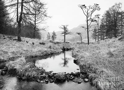 Winter Scene And Lake Photograph - Stream At Blea Tarn by Tony Higginson